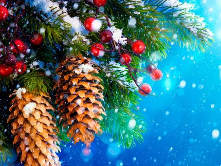 Афиша на Новогодние праздники