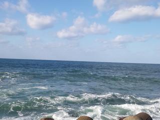 運命の波と婚活