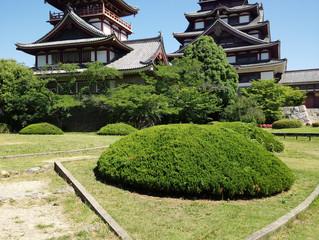 京都伏見桃山城