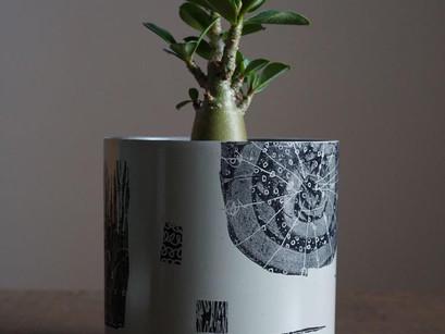 POP UP_ JUN KANEKO  @jun_kaneko  x  Total Plants  bloom  @totalplantsbloom