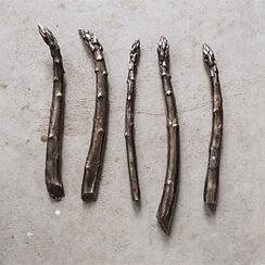Asparagus Pomarius Solid Bronze
