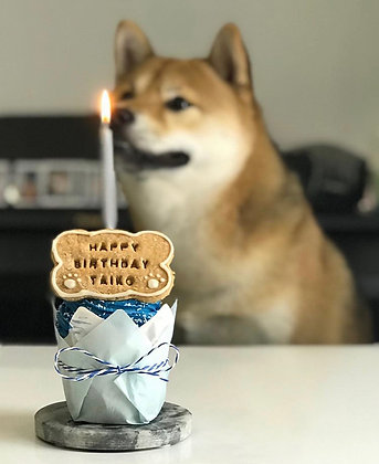 Maxi Pupcake with Candle & Ribbon