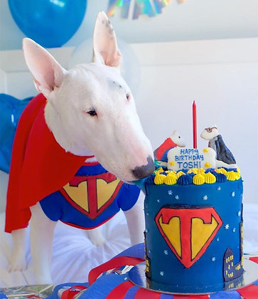 Custom Cakes - let us design your ultimate dog cake!