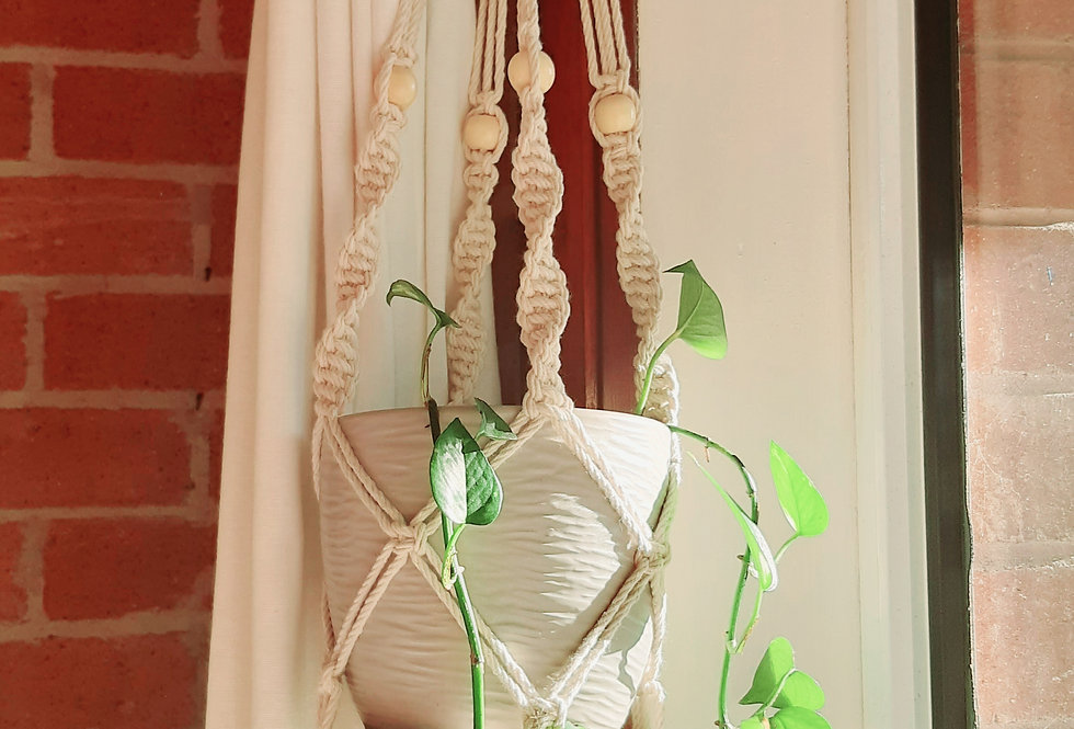 Candy Cane Plant Hanger