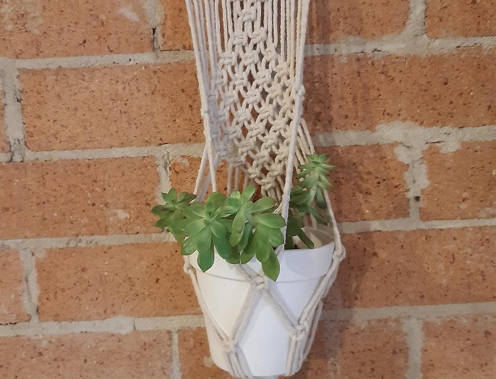 Wall Plant Hanger