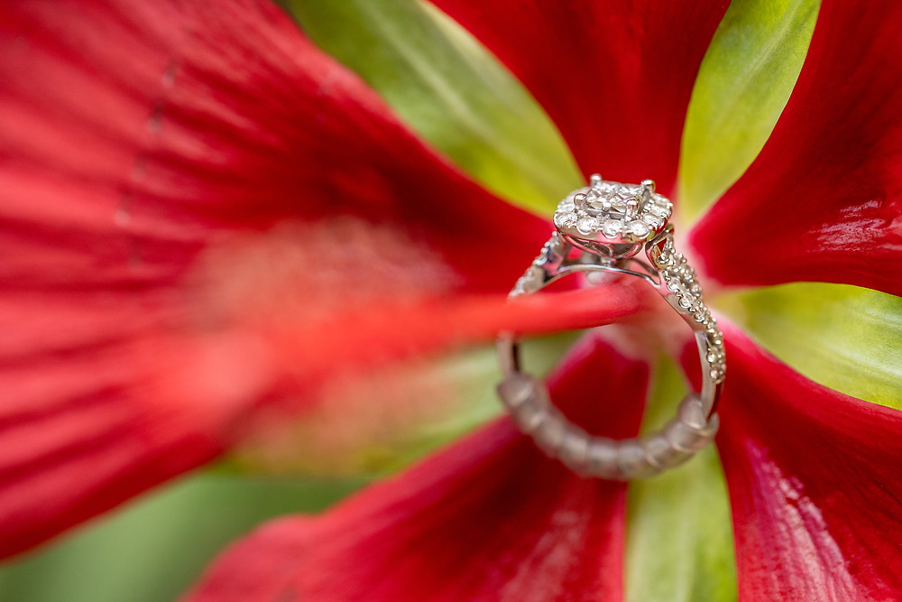 An engagement ring rests on a flower in the garden during an engagement session in Old Town Alexandria, Virginia.