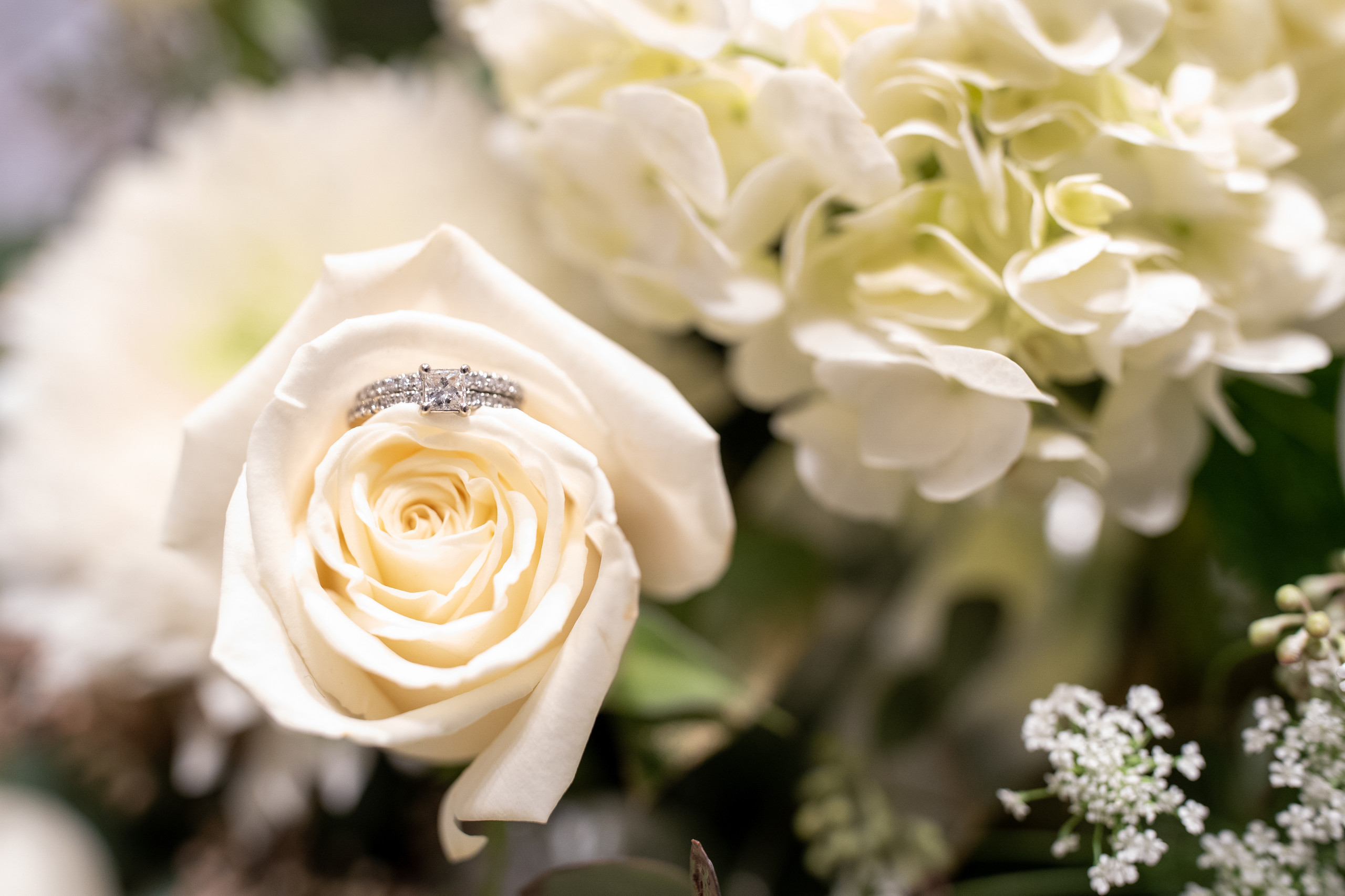 The bride's gorgeous diamond ring sitting in her white rose bouquet before the wedding ceremony at the Hilton Main in Norfolk, Virginia.