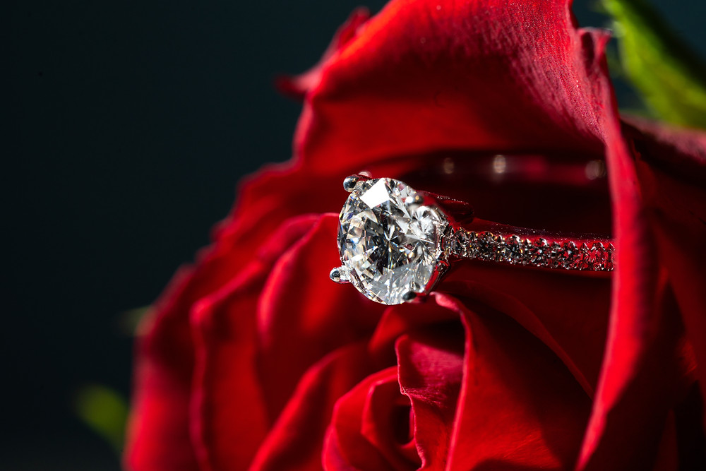 Engagement ring in a rose in Washington DC