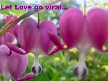 LET LOVE GO VIRAL...