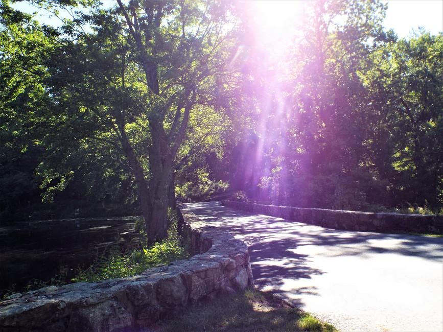 Norwalk Connecticut Pond and Bridge