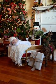 Lisa Marie Photography, Inc - Holiday Photos