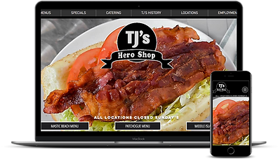Enhanced Web Concepts Portfolio TJ's Her