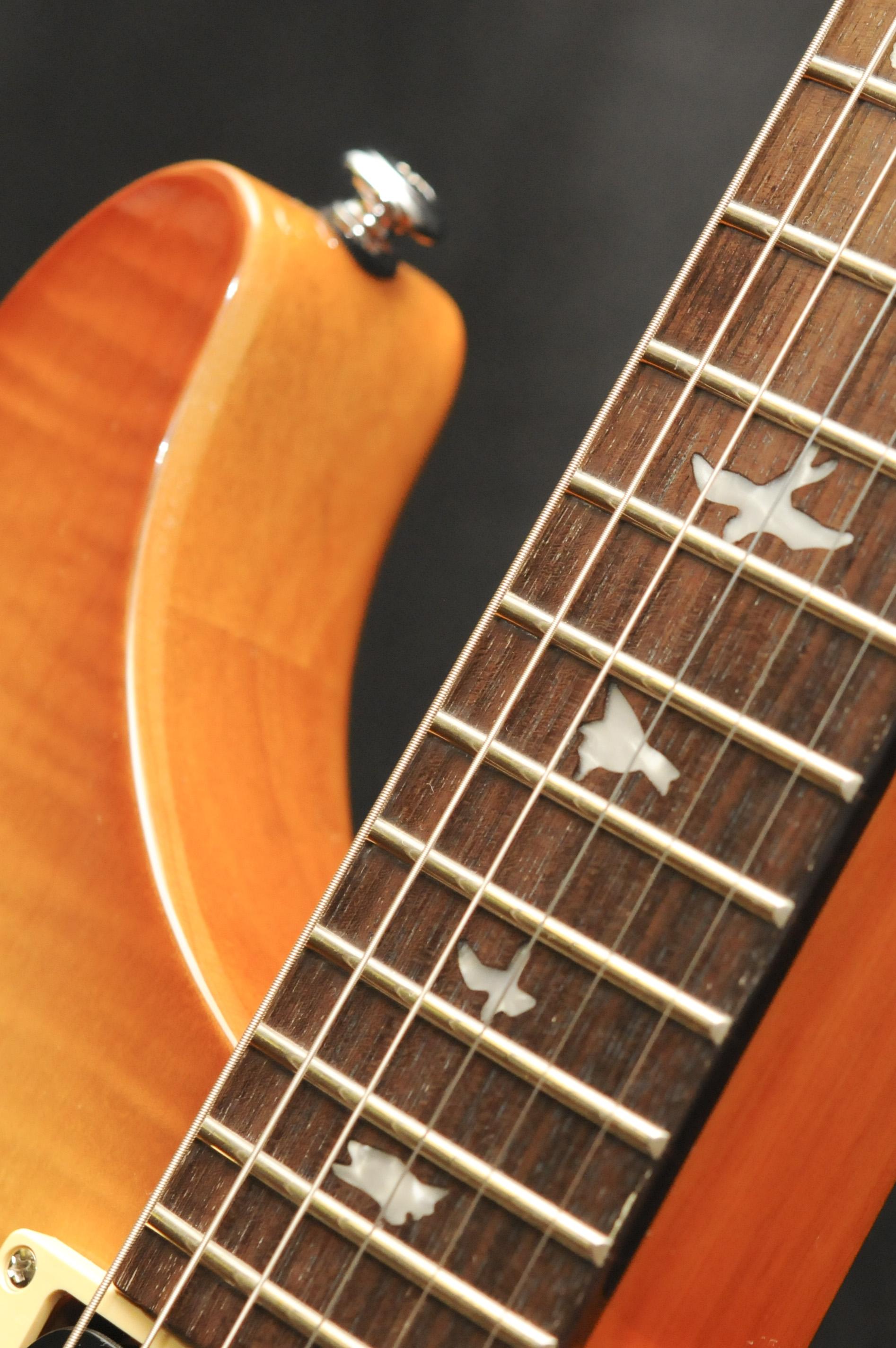 20150728_GuitarCollectionDoubleHelix_19