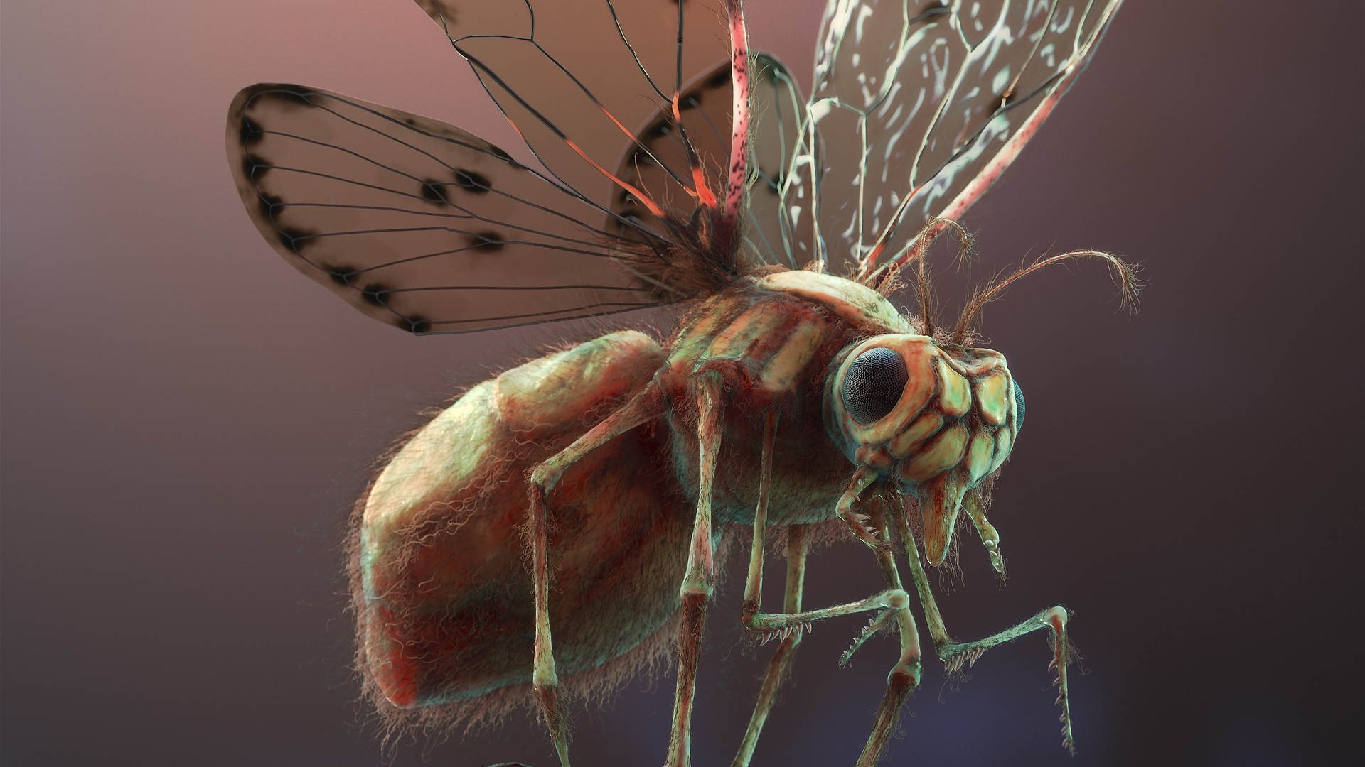 3d-Animated-Fly-creature.jpg
