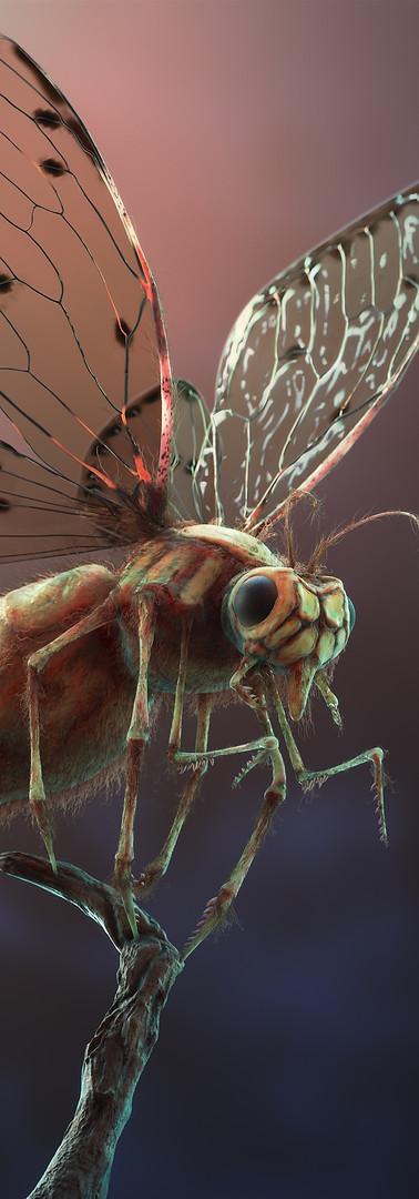 Bug_v2_0000.jpg