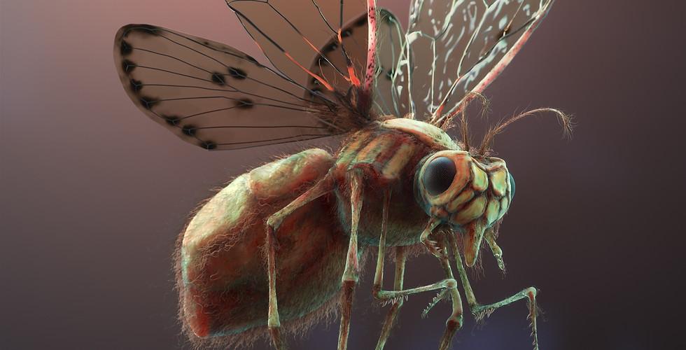 3d-Animated-Fly-creature.jpg
