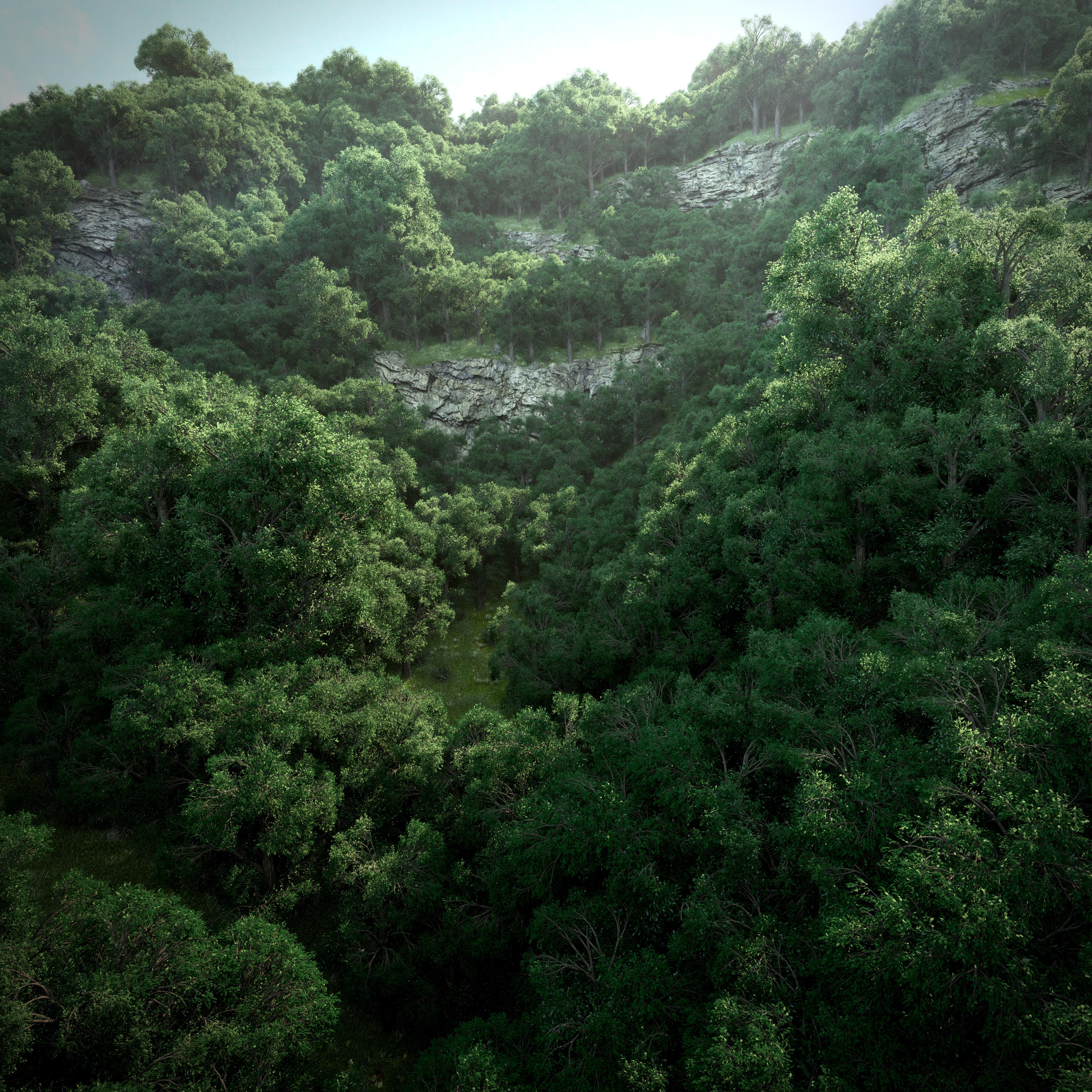 Mystical hike