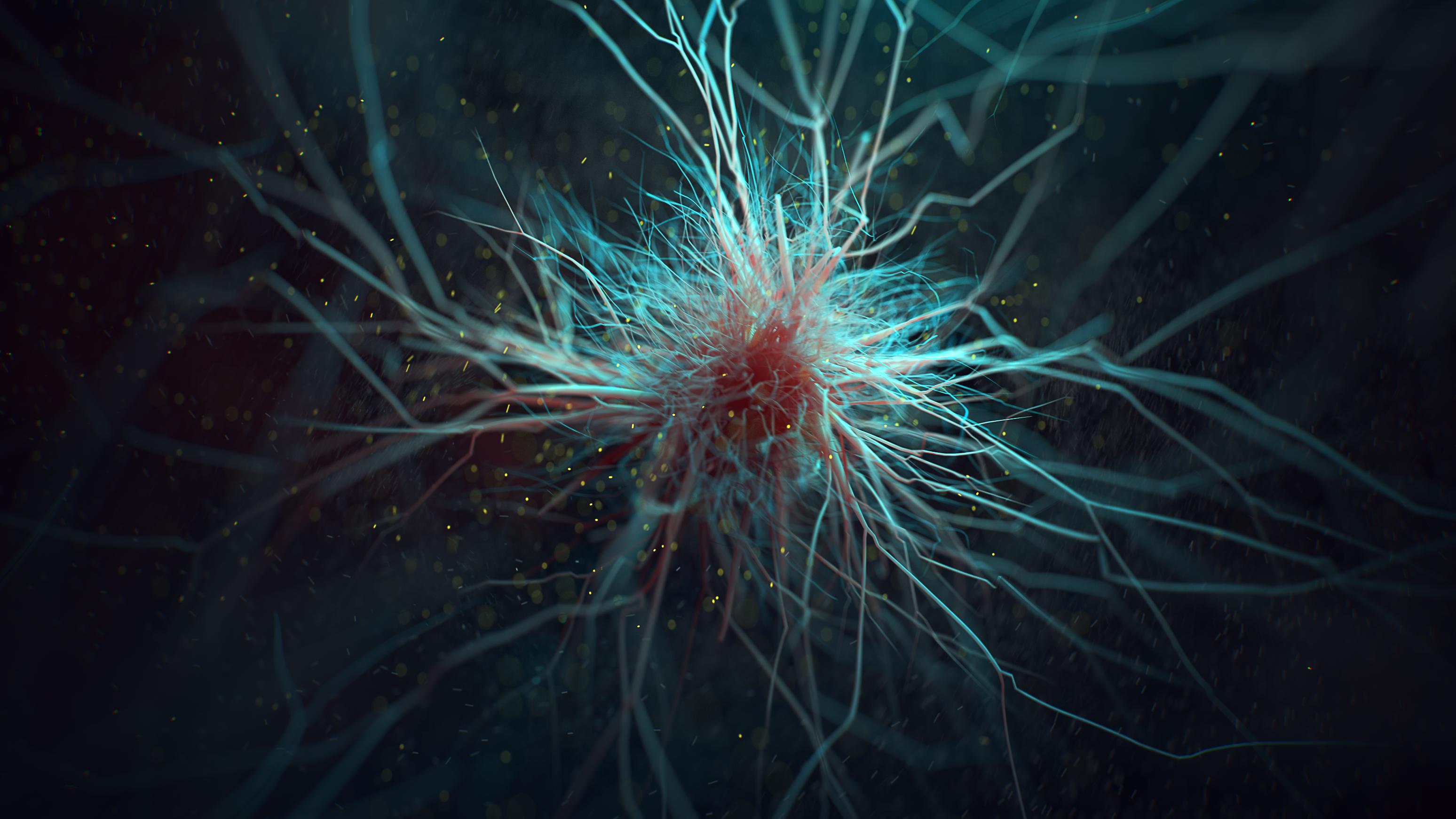 Microglia - micro anatomy