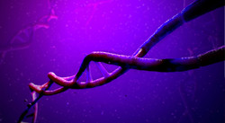 helix_DNA_3.jpg