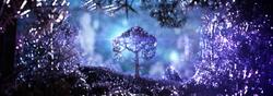 Fib-Tree