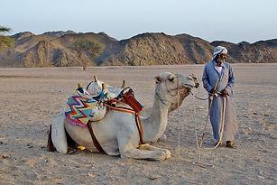 Beduino-12.jpg