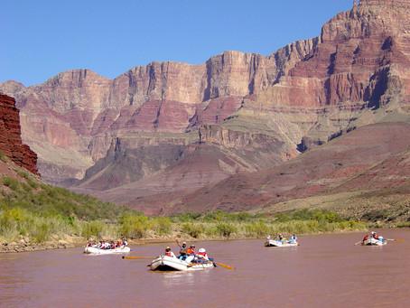 Best Ecotour Experiences to take around the world