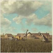 Hurricane Farm