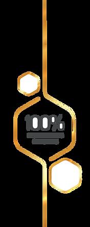 Selo dourado 100 PNG.png
