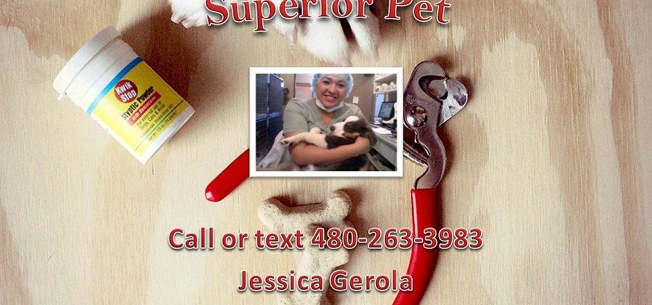 Superior Pet AZ.jpg