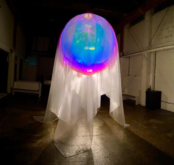 Awakenings I, 2020, installation