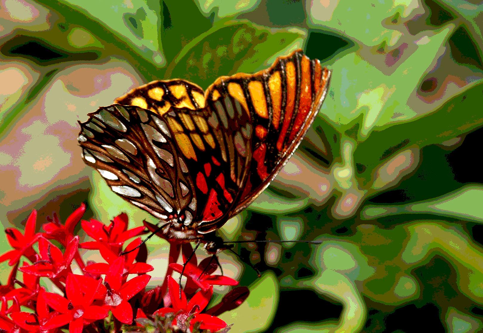 Butterfly post .jpg