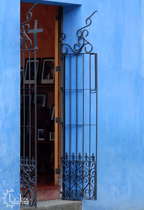 Blue Wall and Gate
