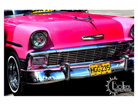 Pink Classic Cars