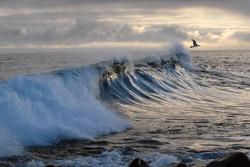 gi+waves.jpg