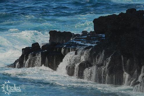 Galapagos Seascape