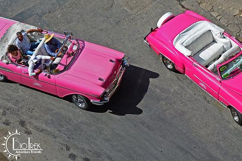 Cuba Pink Cars