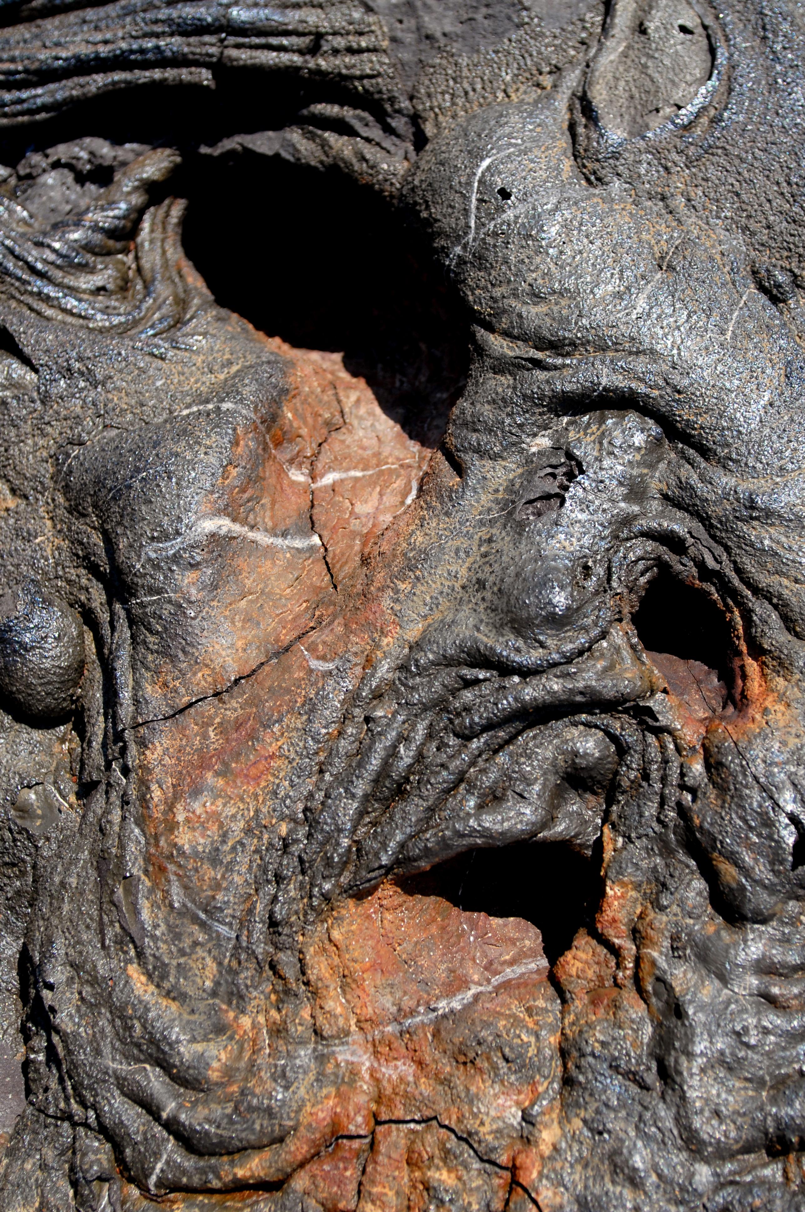 13.  Galpagos lava man .jpg