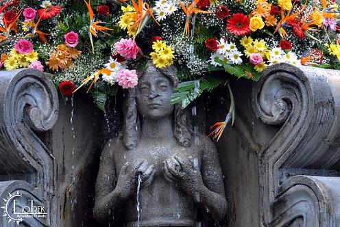 Guatemala Fountain