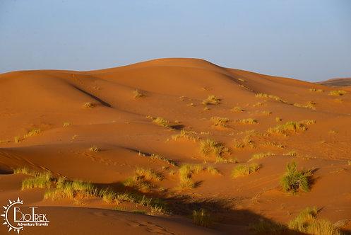 Morocco Sand
