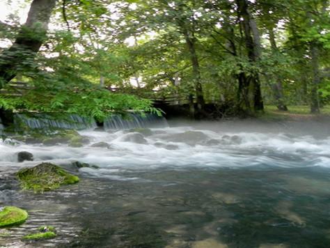 Maramec Springs