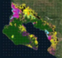 Osa_grid_habitat.jpg
