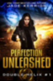 Perfection Unleashed 600x900.jpg