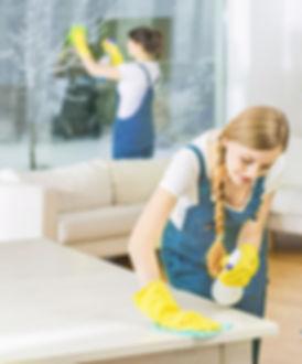 Schoonmaaksterren professionele schoonmaakdiensten
