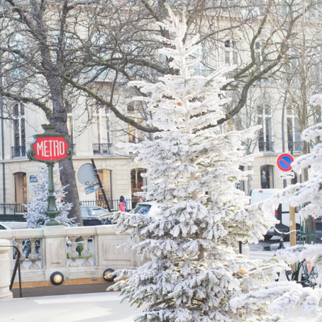 WinterWonderLand Champs Elysees