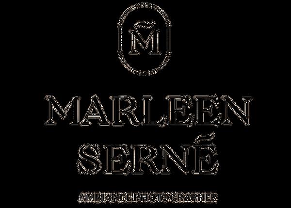 logo 3 met streepje en s verschoven.png