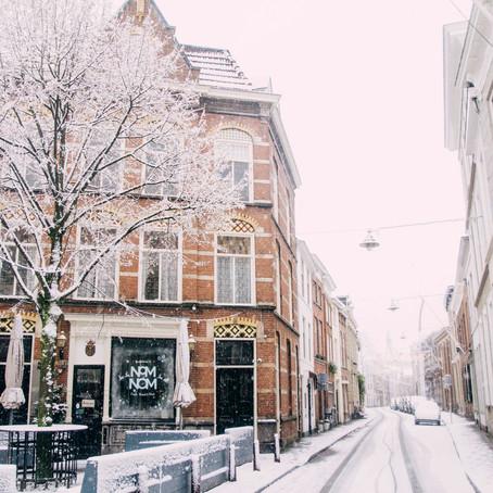 Den Bosch covered in snow 2017