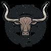 Logo - DH Longhorn.png