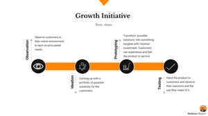 Basic steps of a new Business Growth Initiative