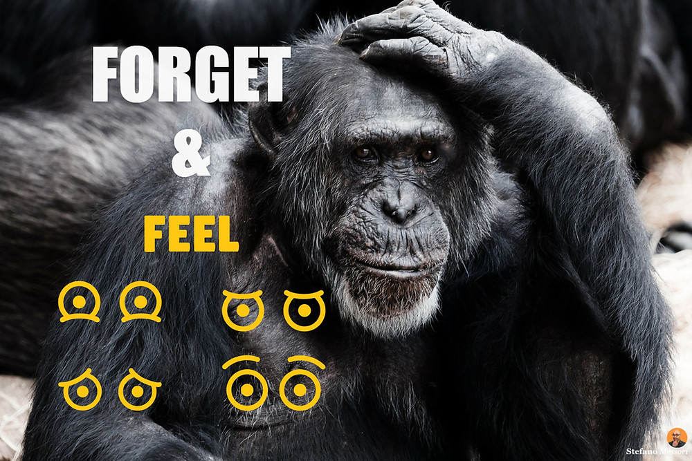 A new business idea requires us to forget and feel