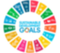 sustainable_development_goals_tcm14-1472